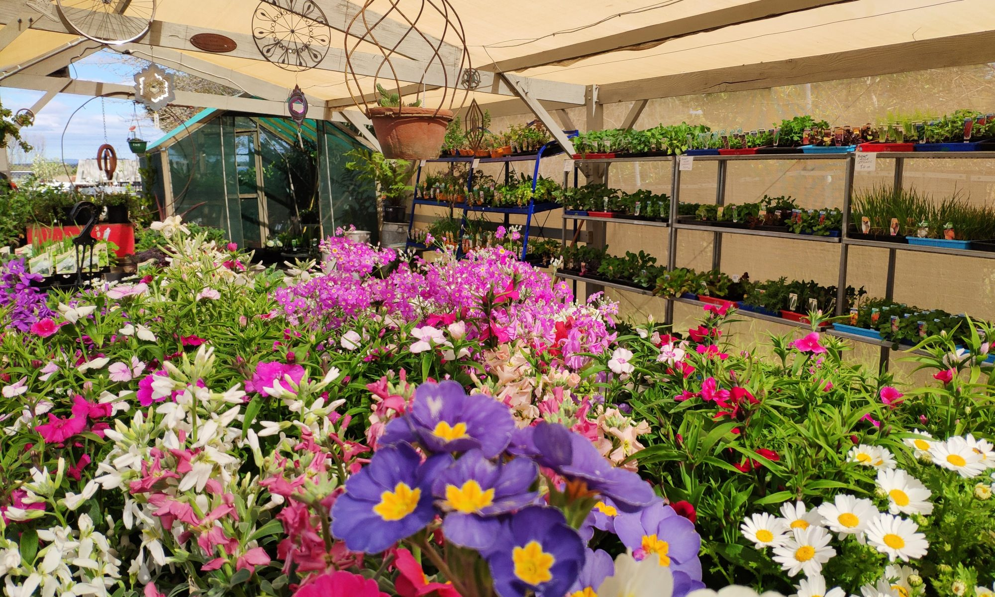 Sorell Nursery and Landscape Supplies